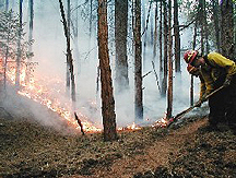 Schoonover Fire, CO, June 2002 - Photo:Justin Domeroski/FEMA
