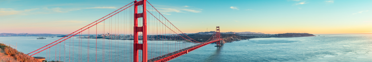 Banner image of SF