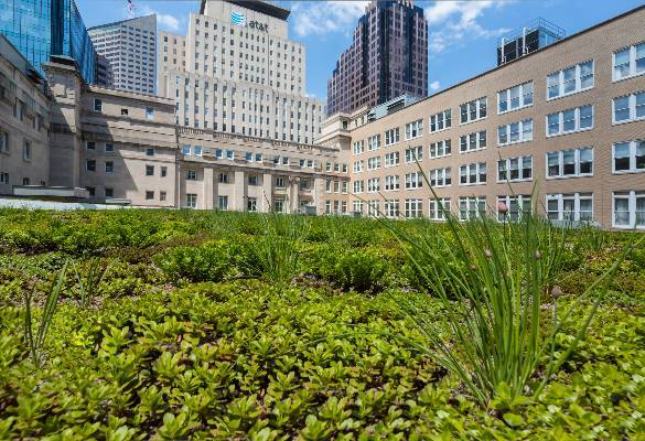 Long shot of green roof on Birch Bayh U.S. Courthouse, Indianapolis