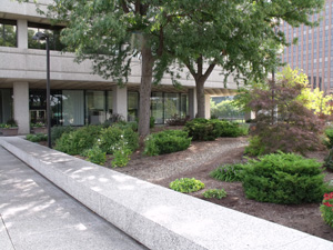 Exterior view of Seiberling Courthouse plaza landscaping