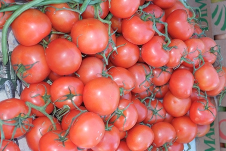 A box of fresh ripened tomatoes