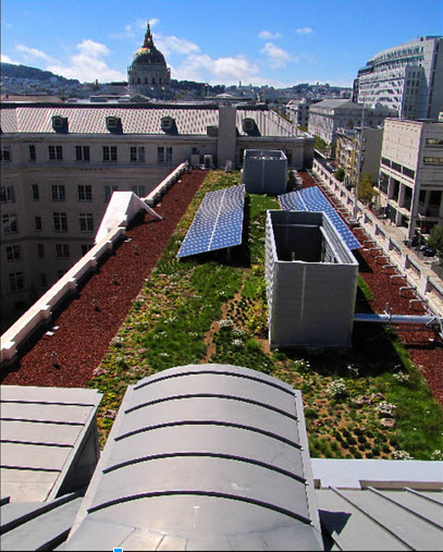 View of Living Roof and its solar panels